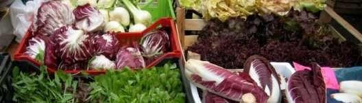 itallian-vegetables-1